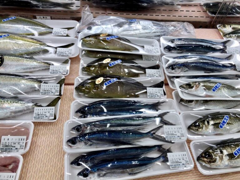 きたうらら海市場