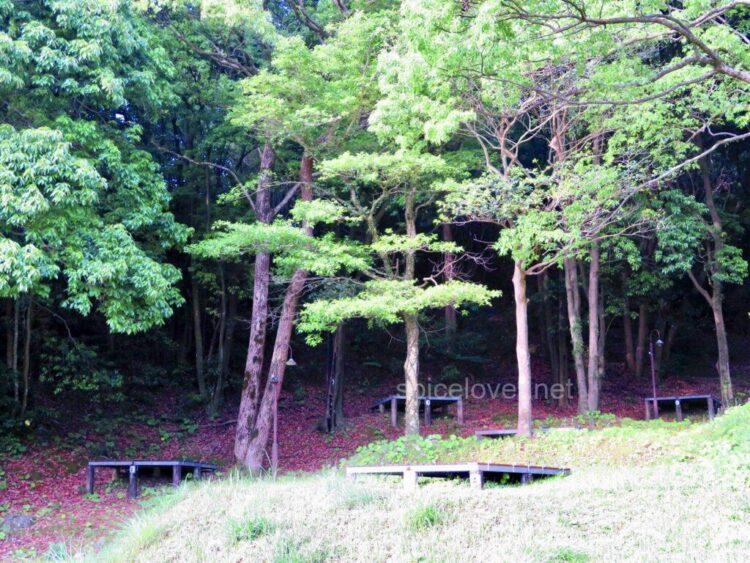 錦江湾公園キャンプ場